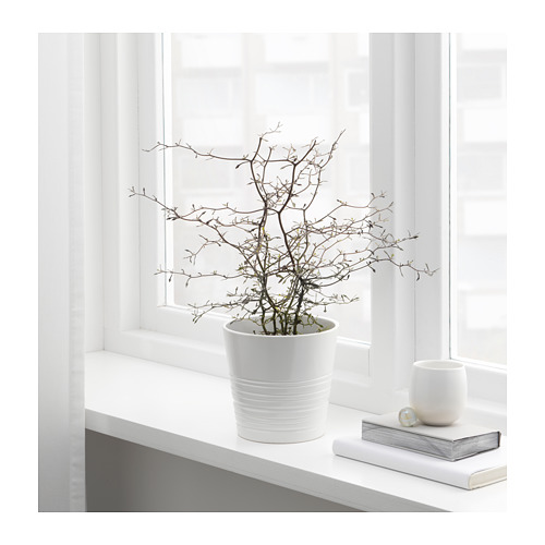 MUSKOT plant pot