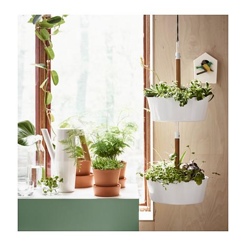 BITTERGURKA hanging planter