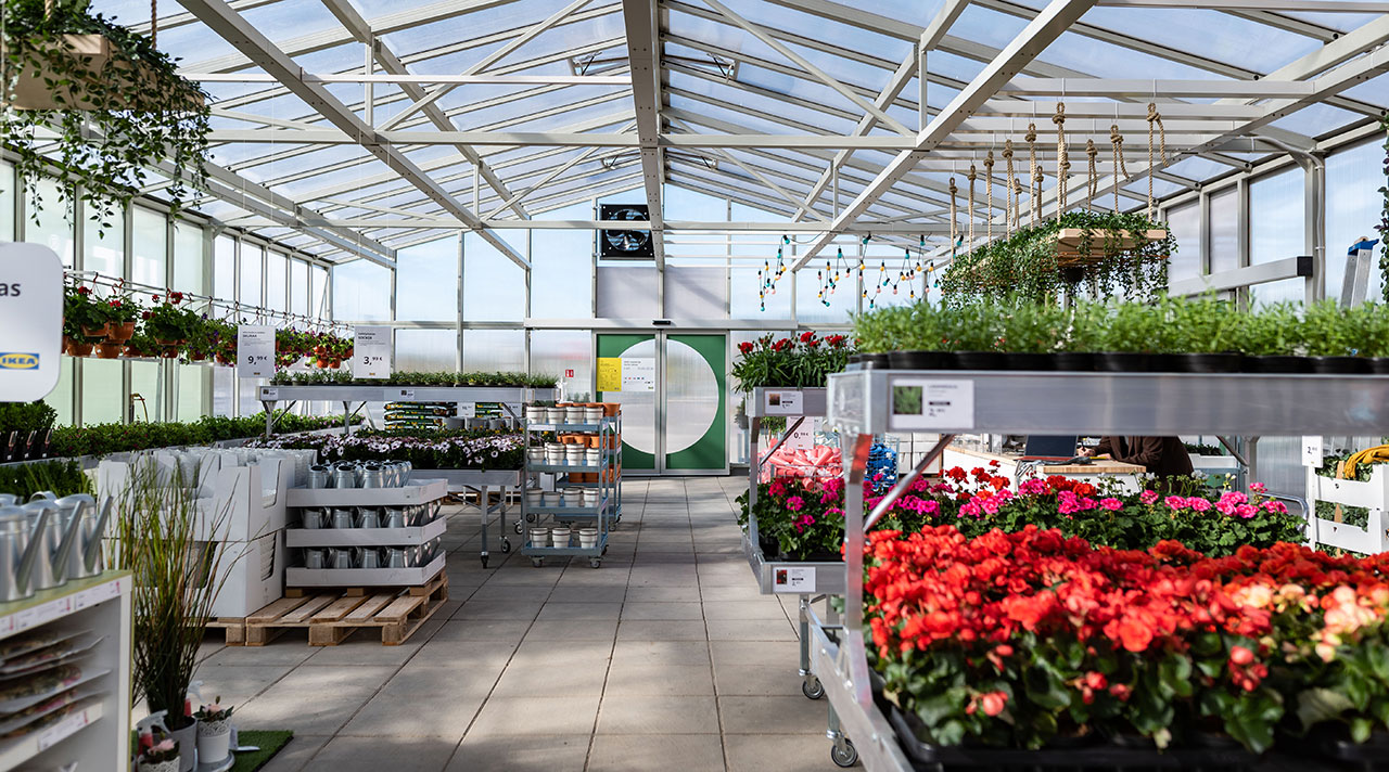 Greenhouse: the novelty of outdoor season